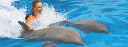 Cozumel-Dolphin Royal Swim VIP