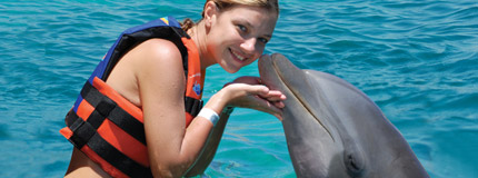 Los Cabos-Dolphin Encounter